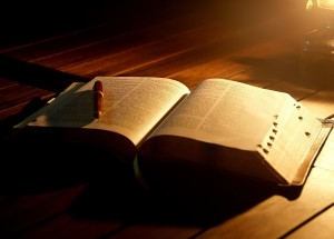 The Bible, Bible Study, God's Word